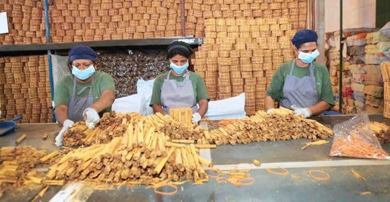 Cinnamon factory